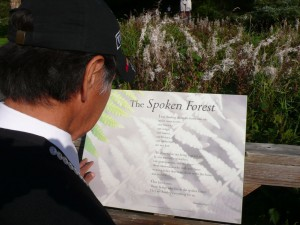 "Ernestine Haye's ""The Spoken Forest"" 2013"